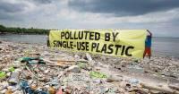Dangers of Plastic