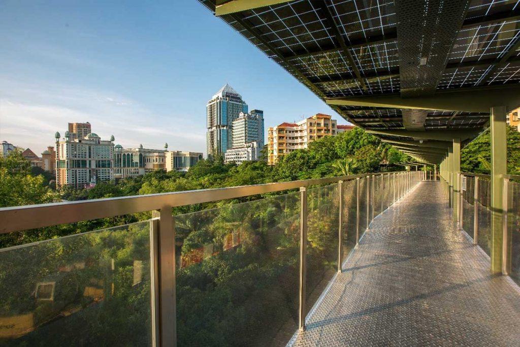 sunway city eco canopy walk
