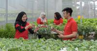 How COVID-19 can Accelerate Malaysia's Circular Economy