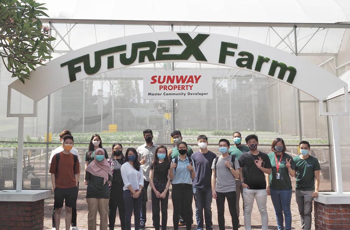 Junior apprentices at Sunway XFarms